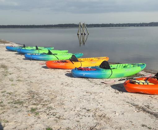 Kayak Tours - Kayak Rentals